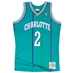 Larry Johnson Mitchell & Ness Soul Swingman Jersey | Charlotte Hornets 1992-93