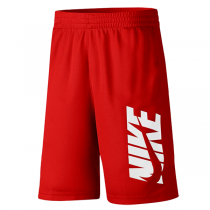 Nike Kids Training Shorts