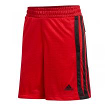 adidas Legend Young Creators Shorts | Red