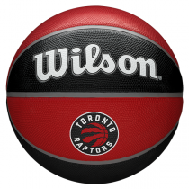 Wilson NBA Team Tribute Ball   Toronto Raptors