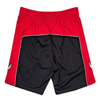 Mitchell & Ness NBA Swingman Shorts | Toronto Raptors 2012-13