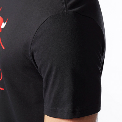 adidas NBA Chicago Bulls Graphic T-shirt