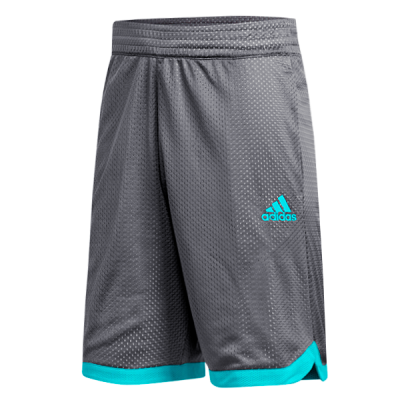 adidas Sport Mesh Grey Shorts